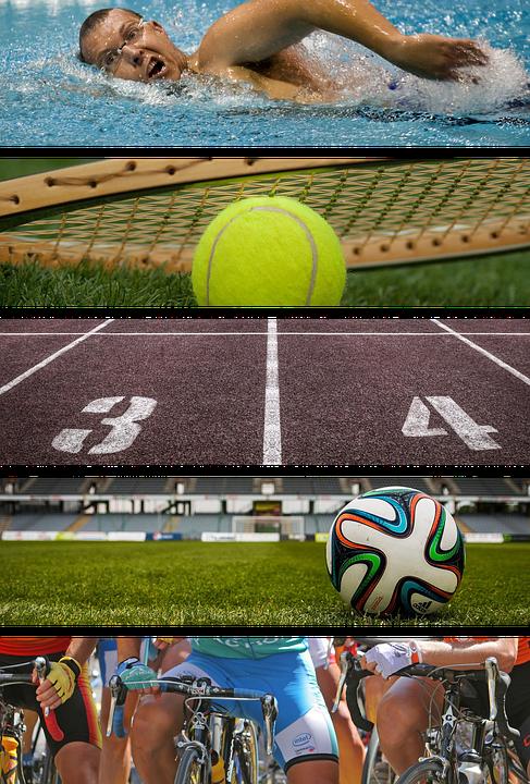 sport, sports, swimming