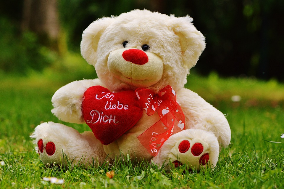 teddy bear, valentine\'s day, love