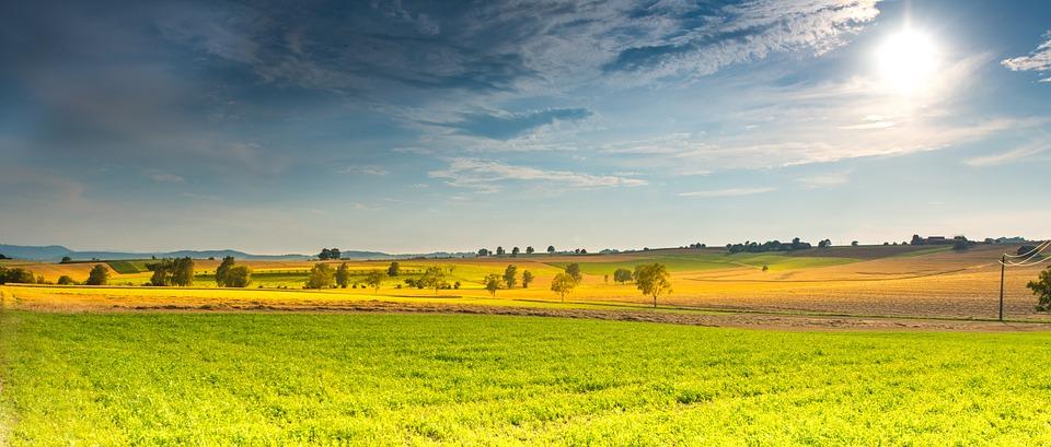 landscape, spring, fields