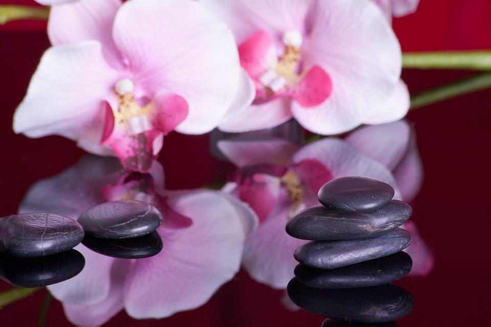massage, mirroring, orchid