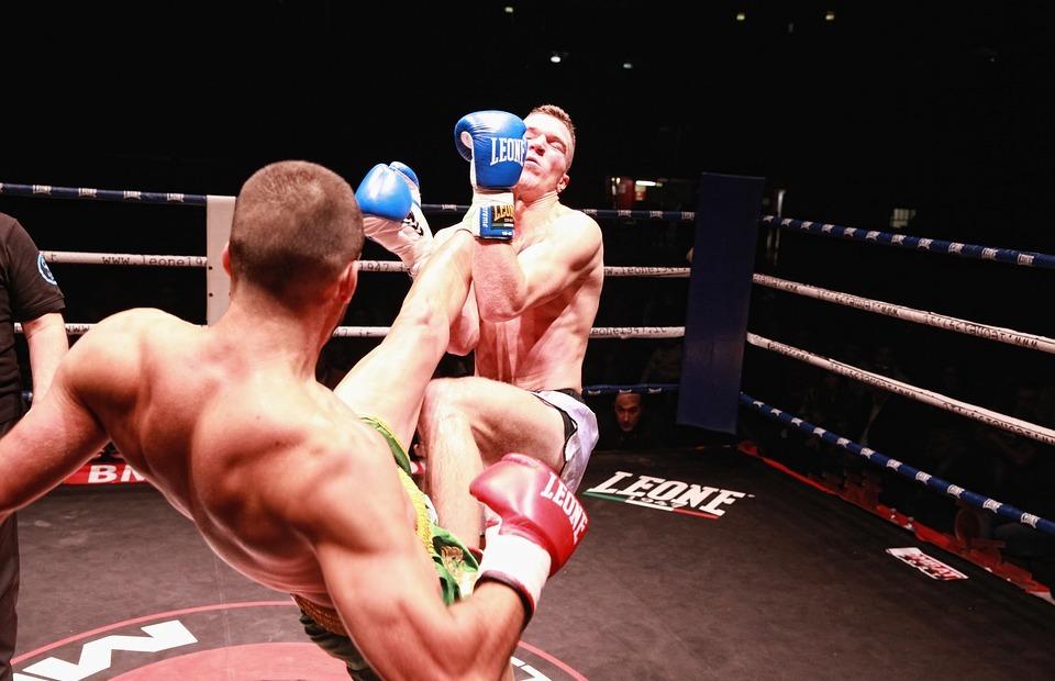 boxing, kick boxing, wrestling
