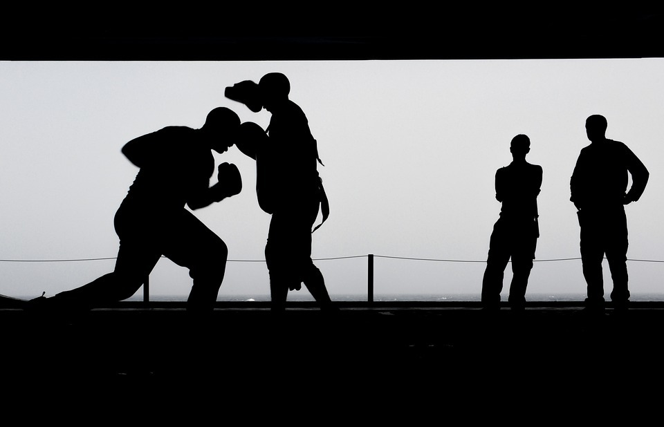 boxing, training, workout