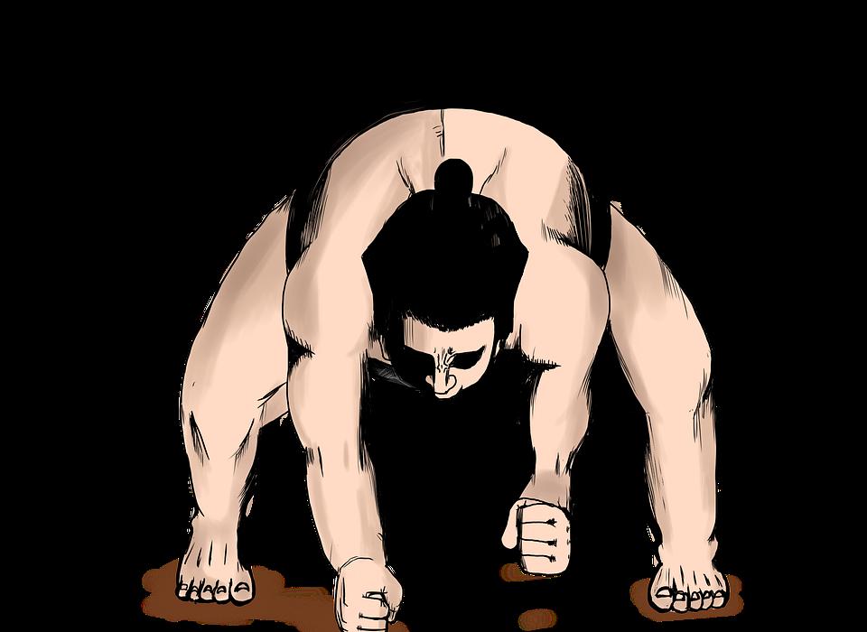 sumo wrestling, wrestlers, sports