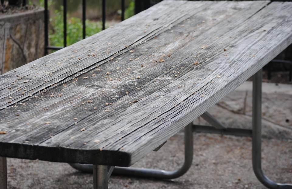 picnic, table, bench