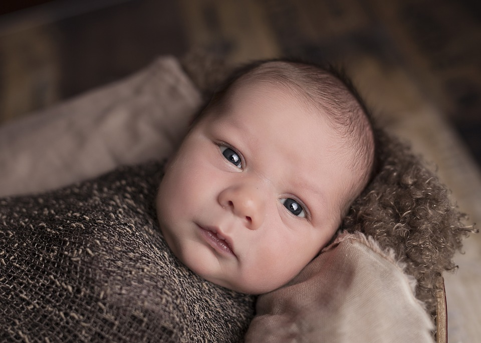 baby, face, portrait