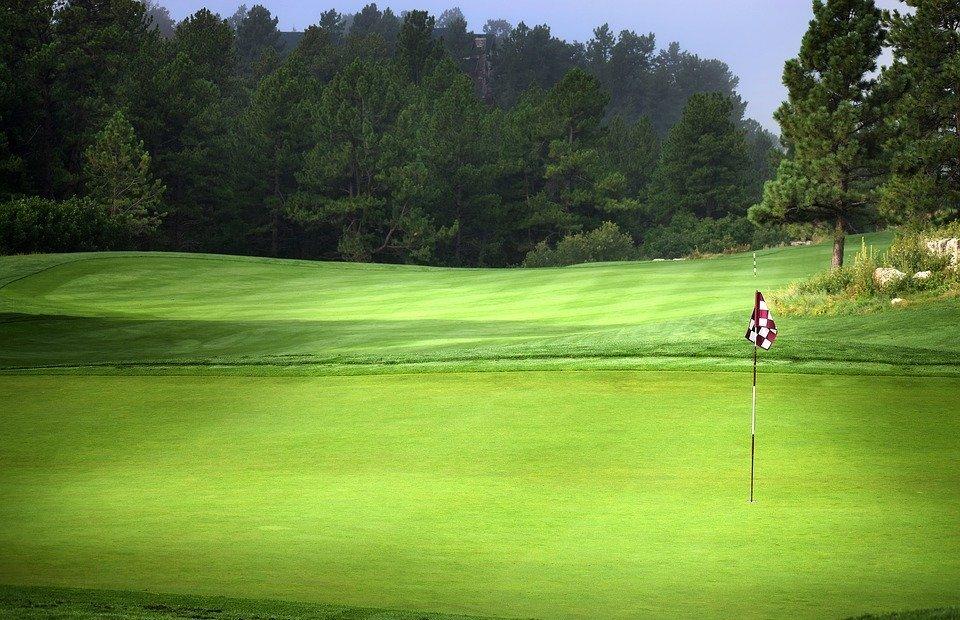 labor day, golf, grass