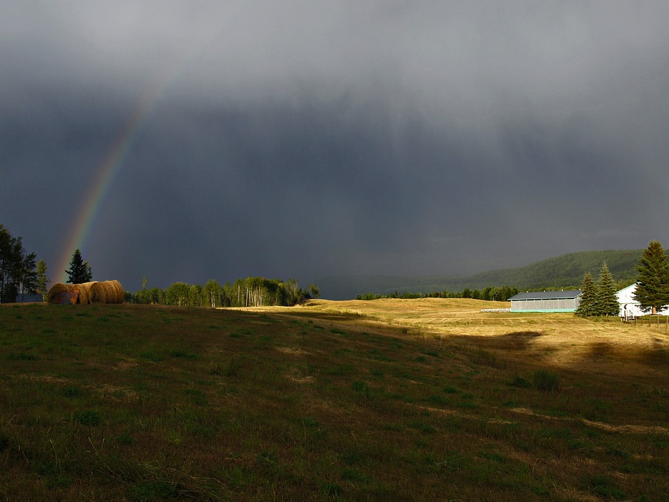 thunderstorm, rainbow, field