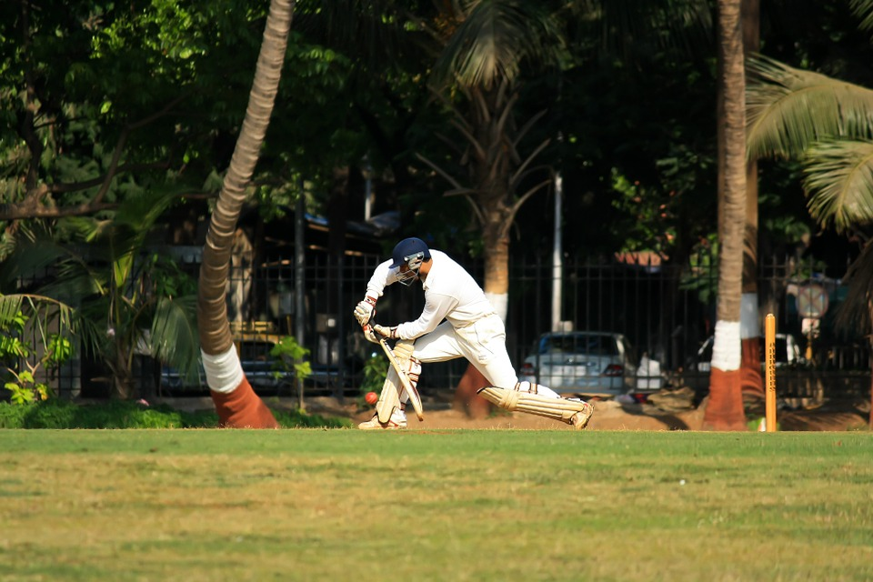 cricket, stroke, batting