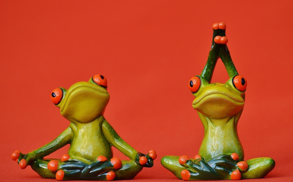 frogs, fig, yoga