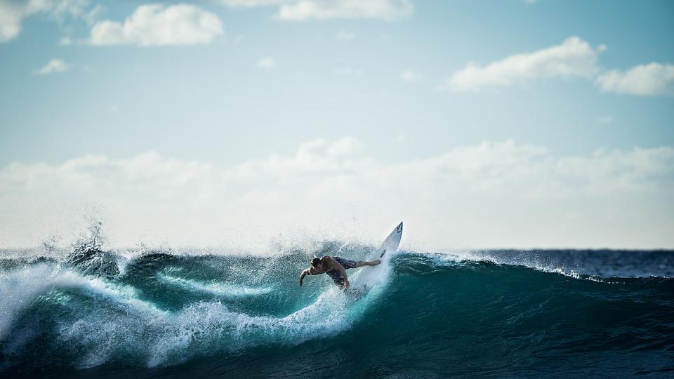 surfing, surfer, wave