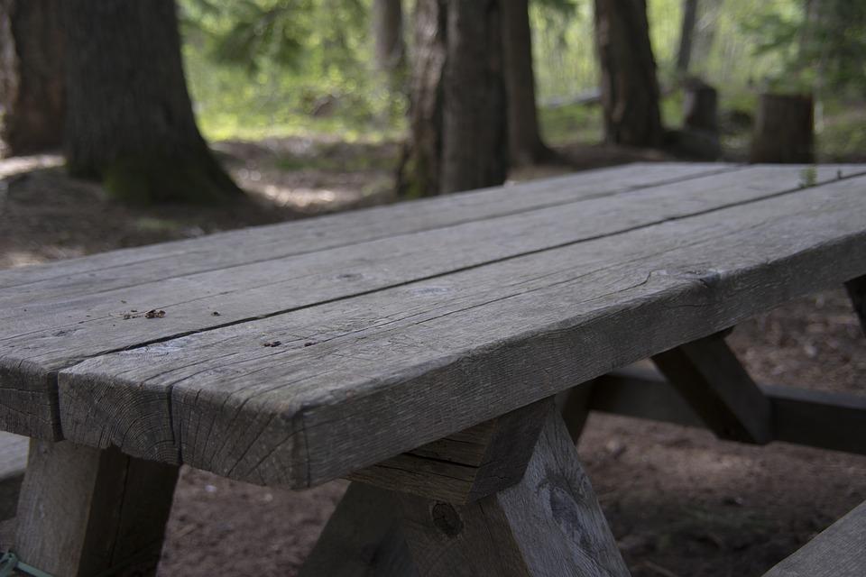 picnic, table, picnic table