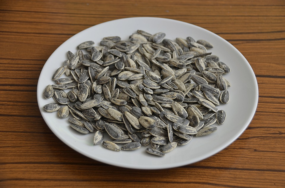 sunflower seeds, roasted seeds, power