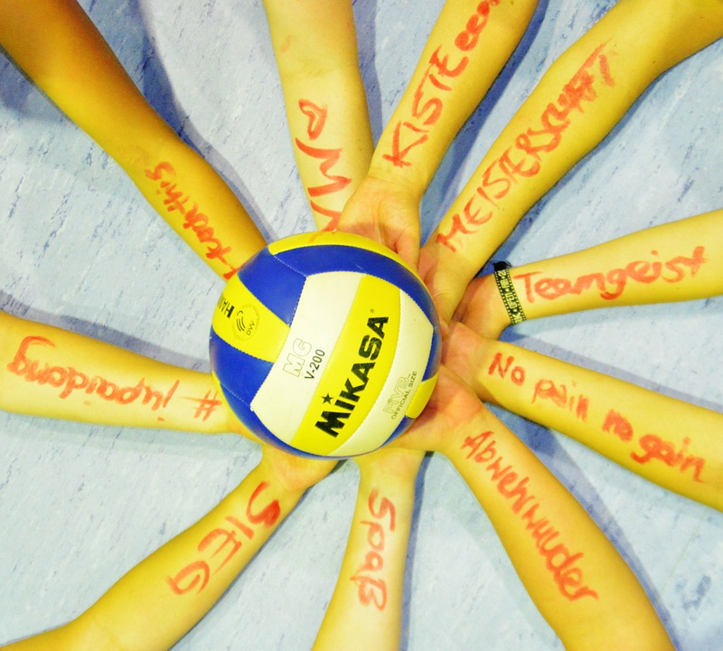 volleyball, team, team sport