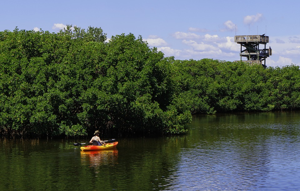 kayak, observation tower, river