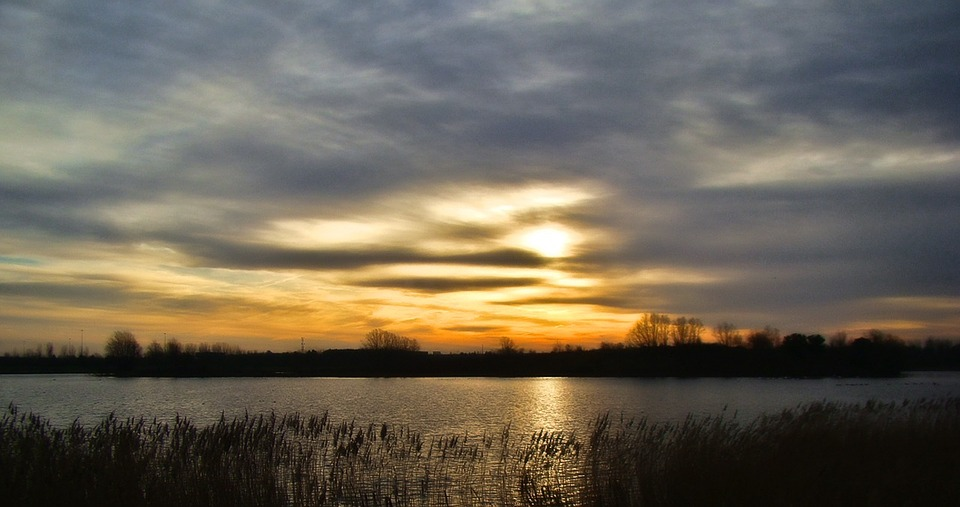 lake, tree, landscape