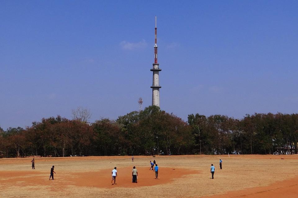 cricket, sports, practice