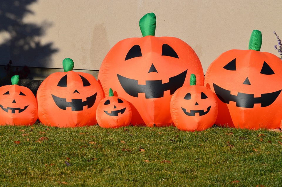 pumpkins, jack-o-lantern, halloween