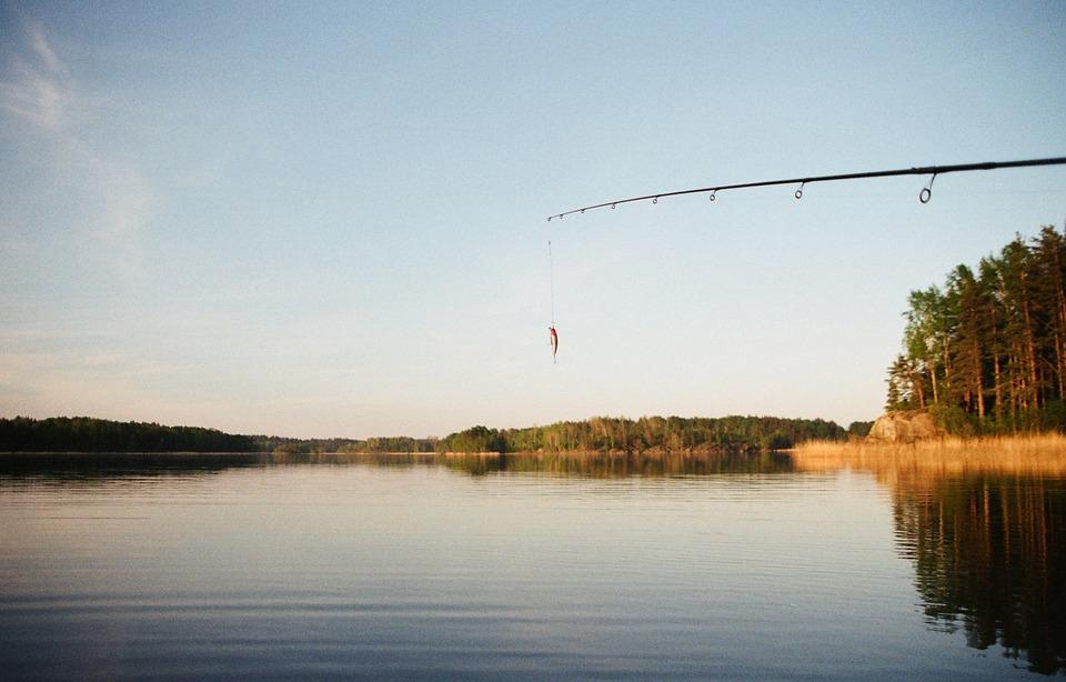 fishing, rod, leisure