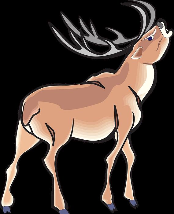 angry, deer, wild