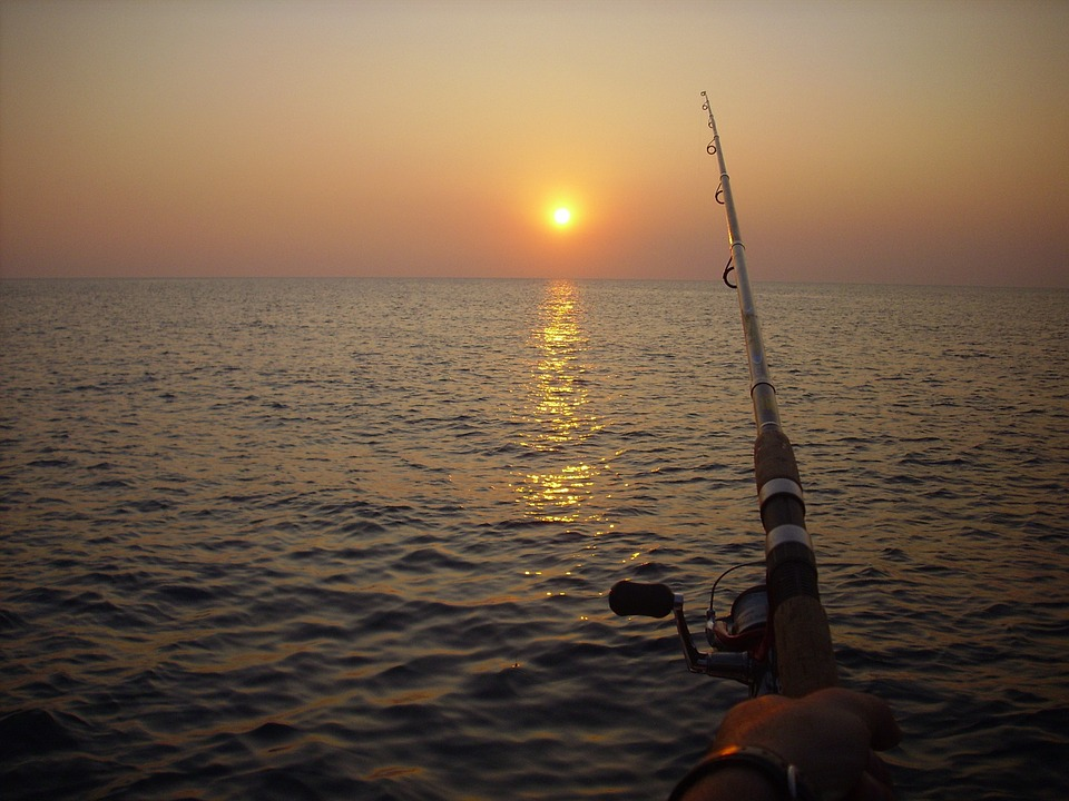 fishing, fishing rod, sunset