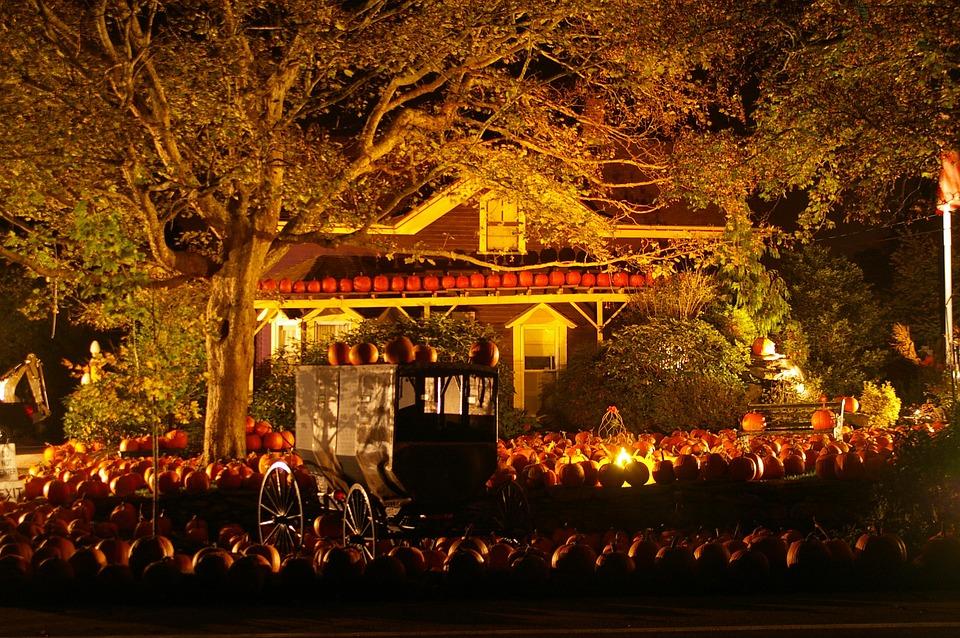 halloween, pumpkins, scene