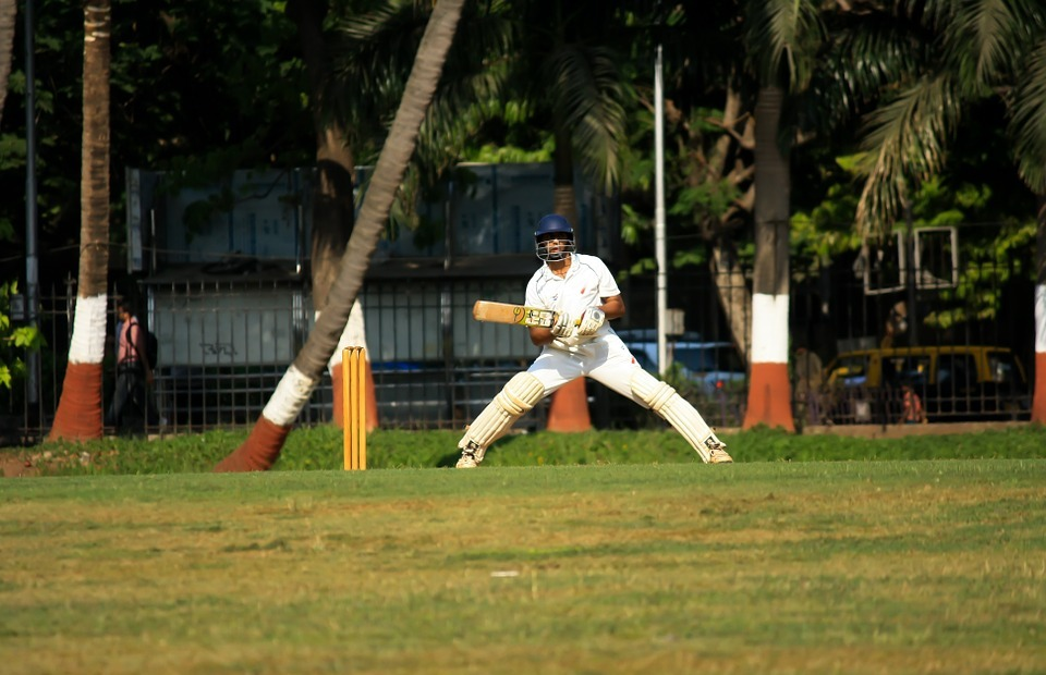 cricket, batsman, player