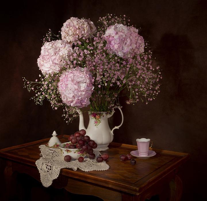 still lifes, flowers, hydrangea
