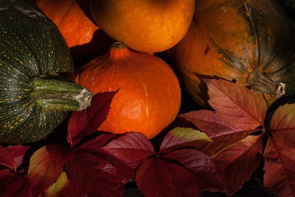 kabocha, cucurbita maxima, pumpkins