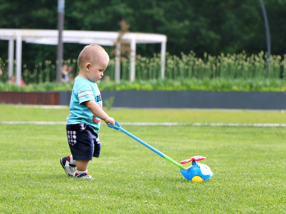 baby, field, toy