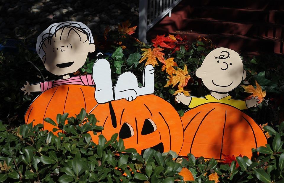 thanksgiving, pumpkin, halloween