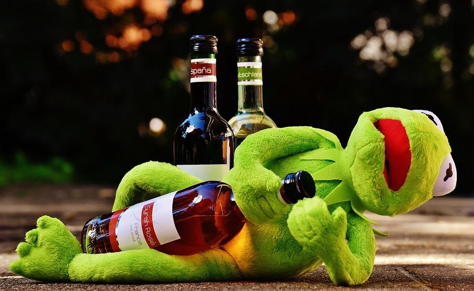 kermit, frog, wine