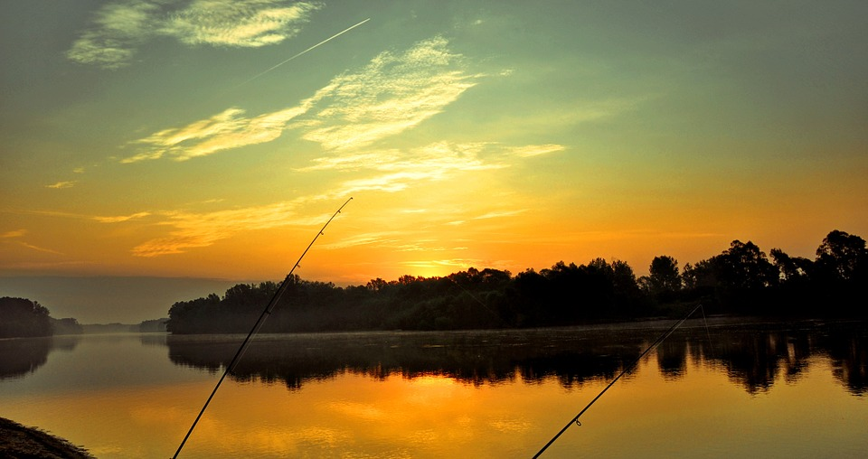 drava, dawn, fishing