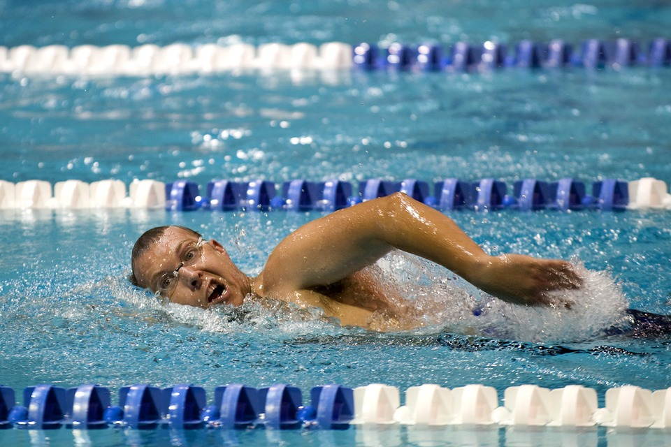 swimmer, training, lane