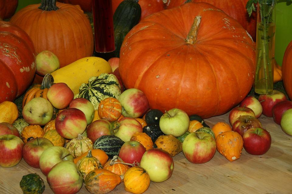 thanksgiving, pumpkin, apple