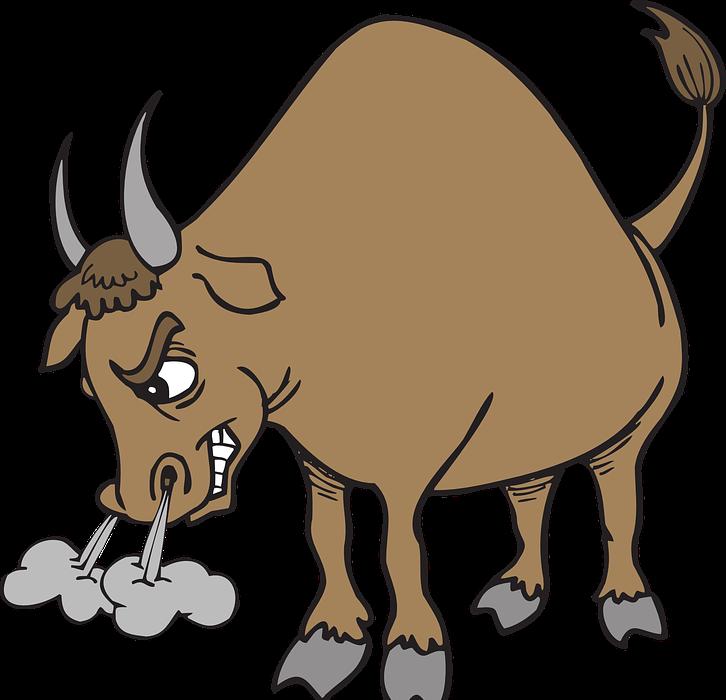 angry, bull, horns