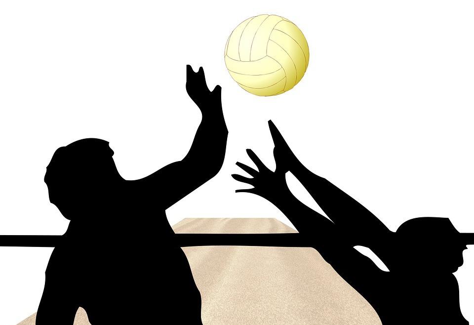 volleyball, ball, network