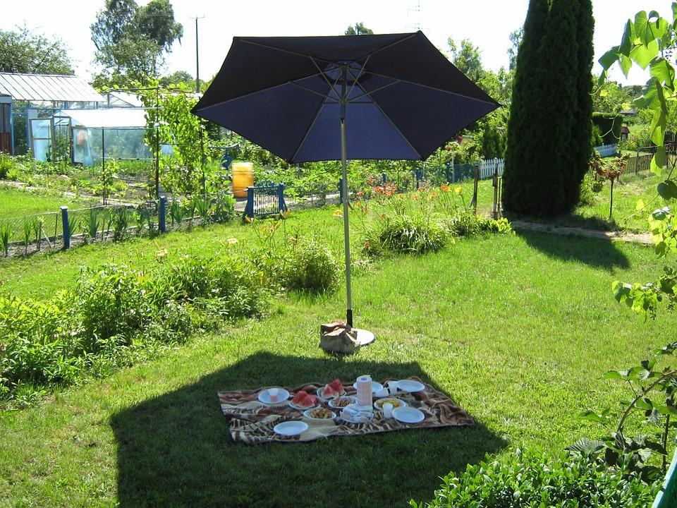 picnic, fun, eating
