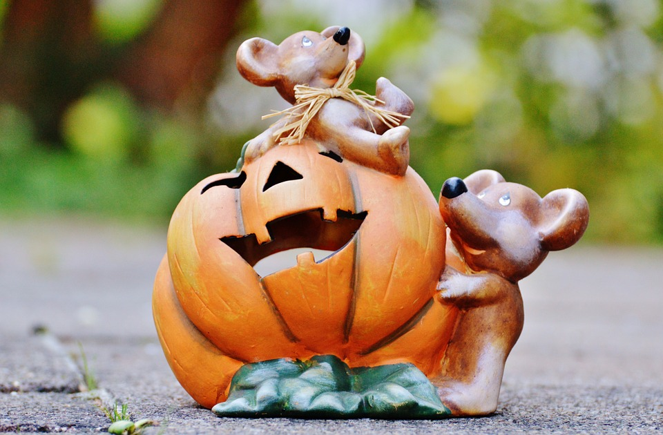 halloween, pumpkin, mice
