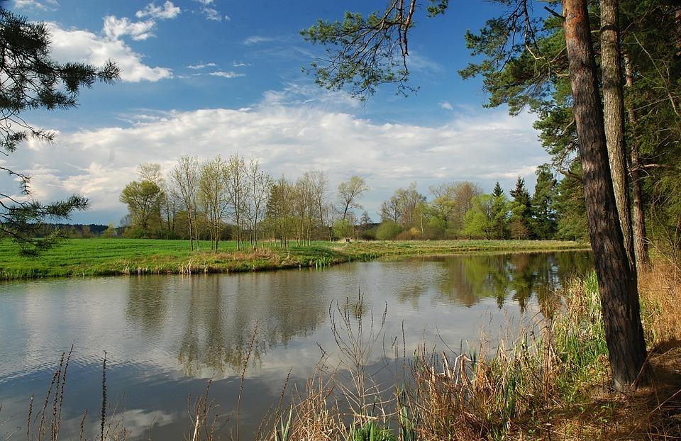 spring, landscape, water-level