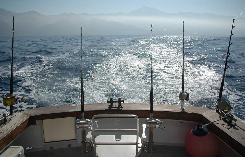 rod, ocean, fishing