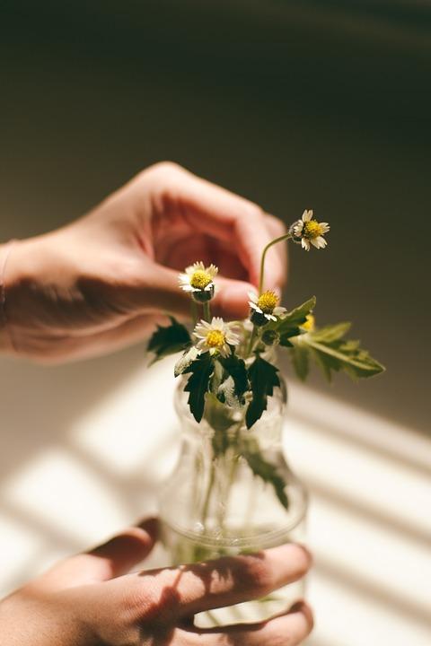 flower, bouquet, white