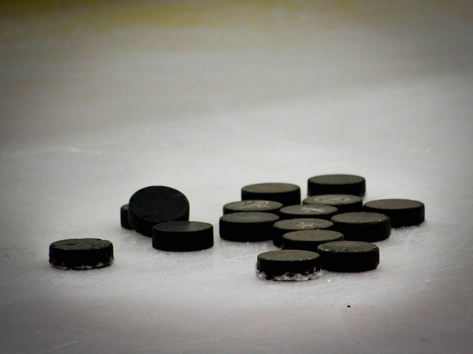 hockey puck, hockey, pucks
