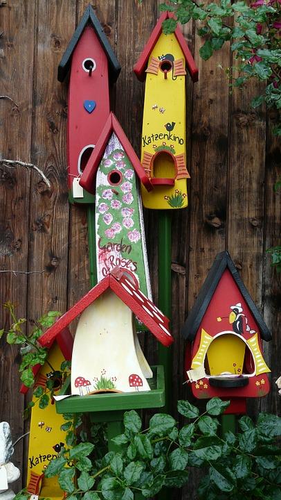 aviary, colorful, bird feeder