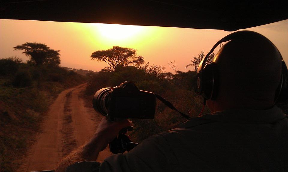 safari, sunset, africa