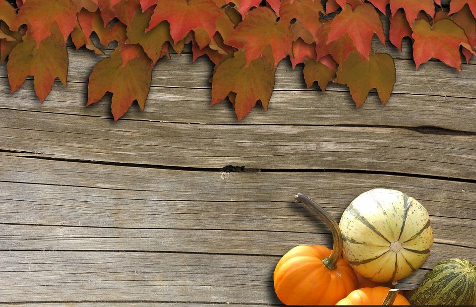 wine, background, autumn