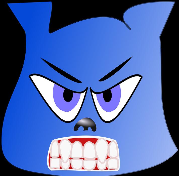 angry, bear, blue