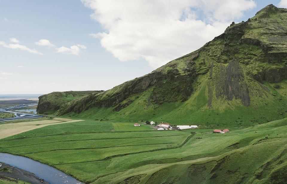 iceland, green, grass