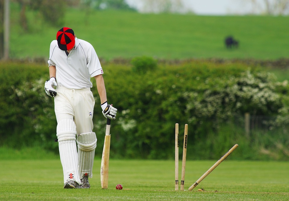 cricket, stumps, ball