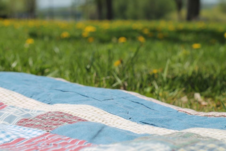 picnic, blanket, summer