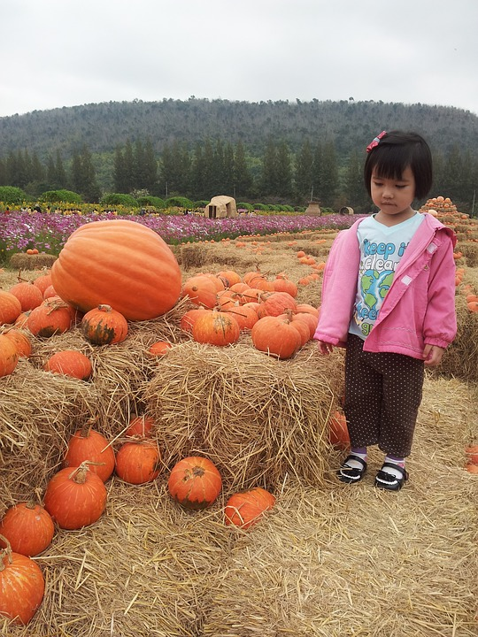 kids, pumpkin, smile